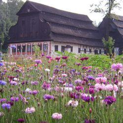 muzeum_papiernictwa_duszniki_zdroj